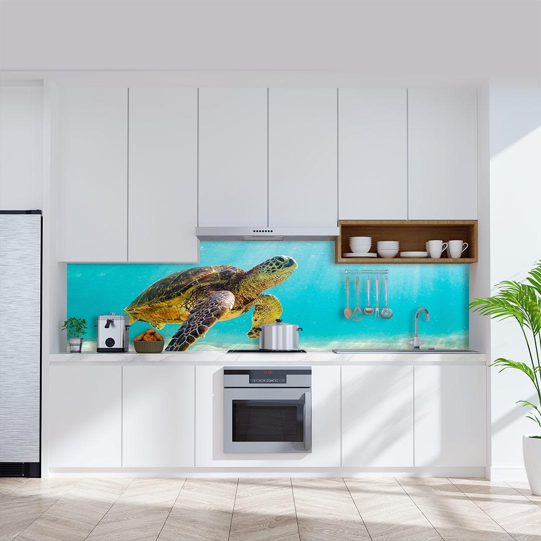 Küchenrückwand Schildkröte