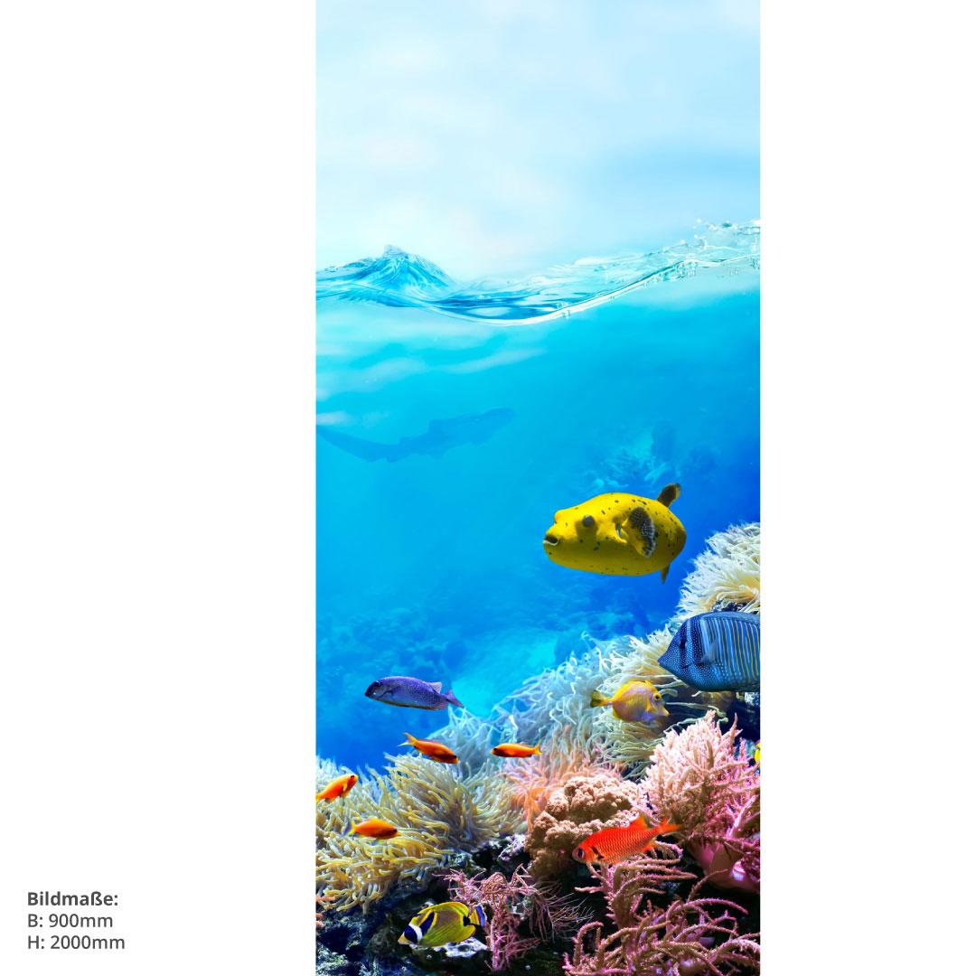 Duschrückwand Great Barrier Reef Grösse