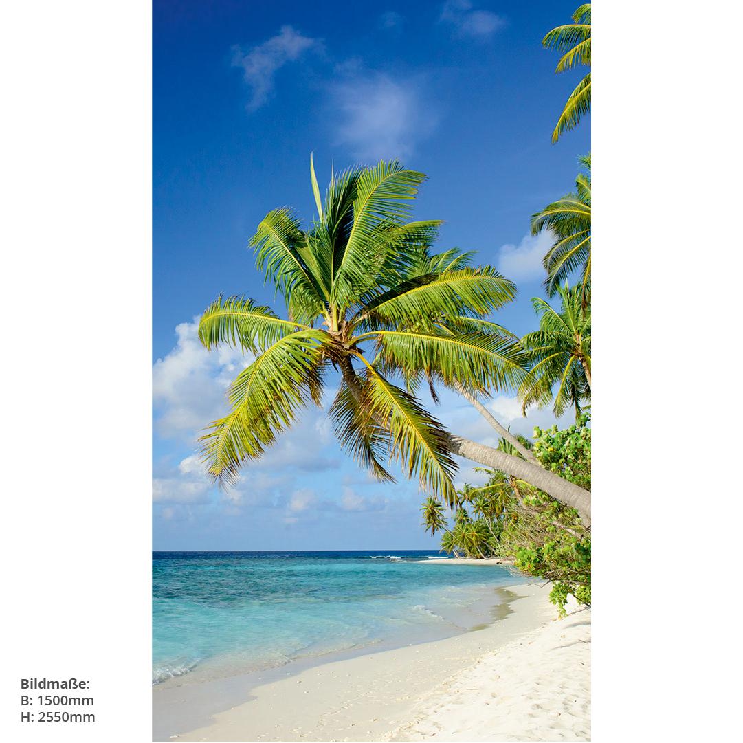 Duschrückwand Palmen