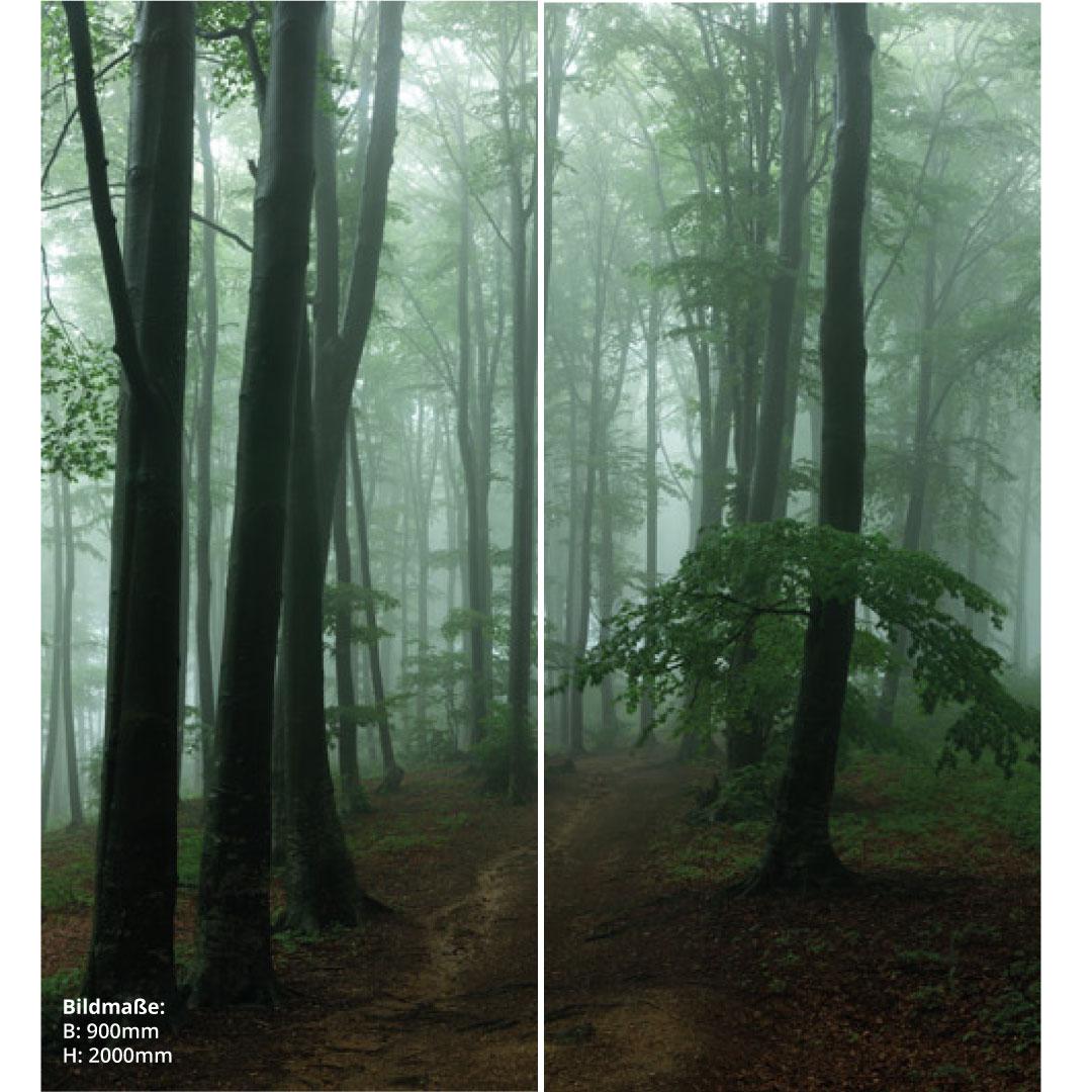Duschrückwand Nebeligen Wald über Eck Set