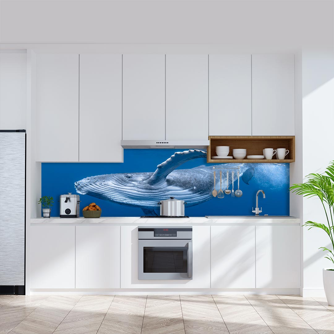 Küchenrückwand Buckelwal