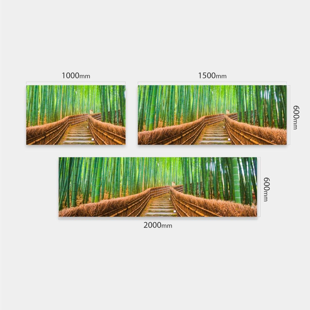 Küchenrückwand Bambuswald Massen